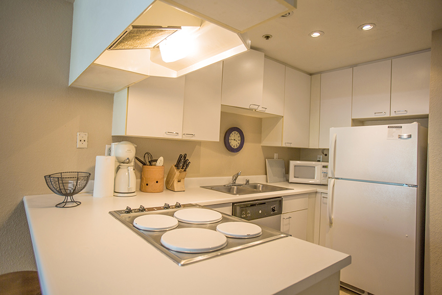 kitchen at 201 Harrrison 211